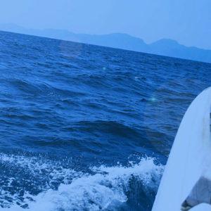море-крым